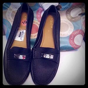 New Women Coach Shoes
